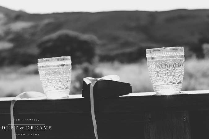 Dust and Dreams Photography Marnus and Lucy The Cowshed Blog-23