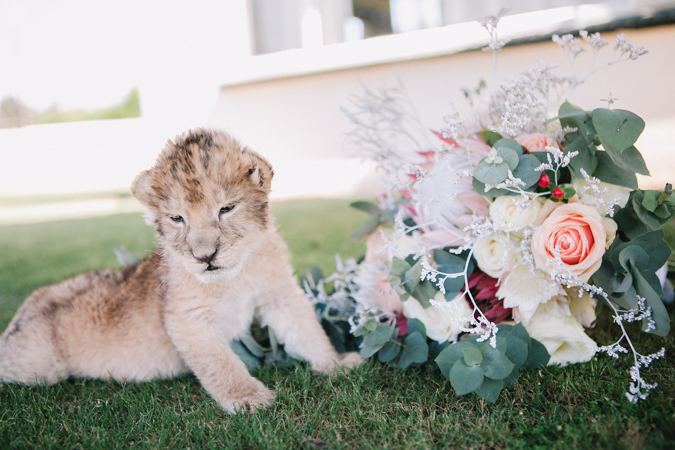 Real Wedding Dust and Dreams Photography-43