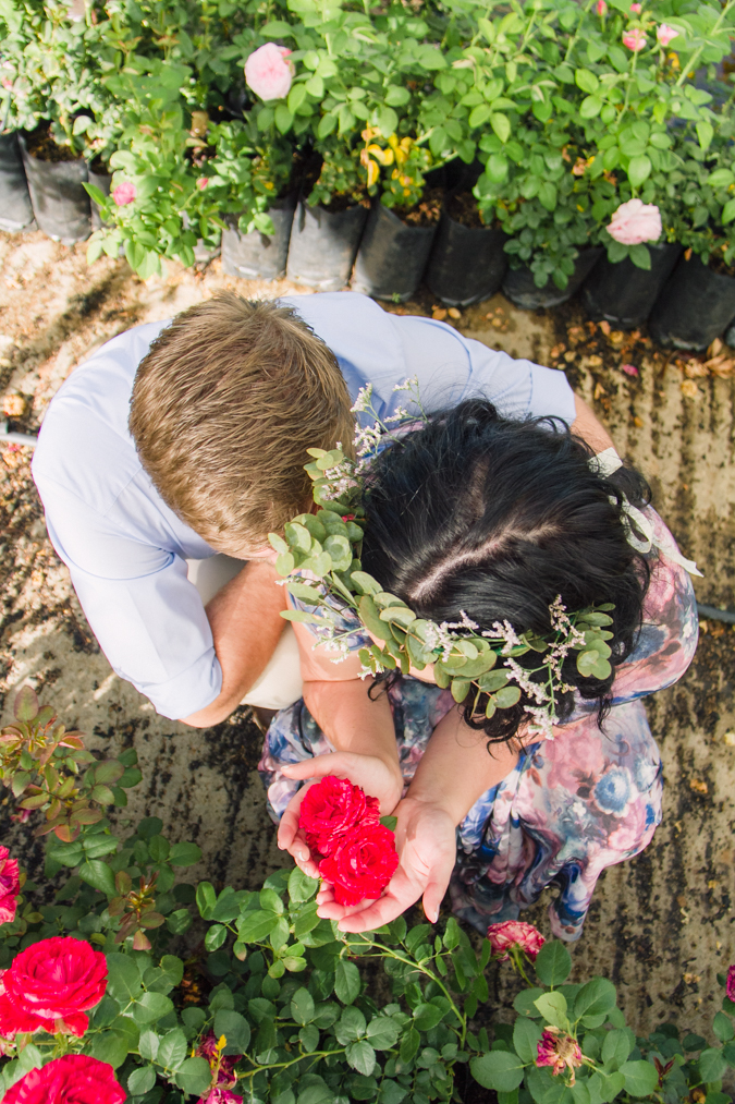 Dust and Dreams Photography _ Engagment shoot _ Ludwig Roses