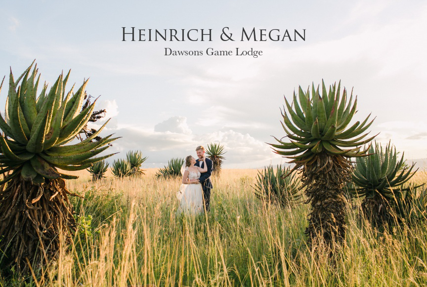 Dust-and-Dreams-Photography_Dawsons-Game-Lodge-Wedding